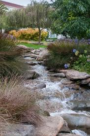 lawrence halprin u0027s lucasfilms campus garden shoots