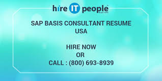 Sap Basis Administrator Resume Sample by Sap Basis Consultant Resume Hire It People We Get It Done
