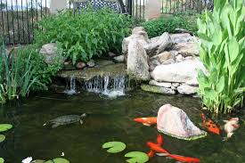 waterfalls in phoenix arizona the pond gnome