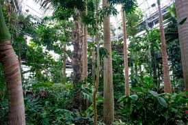 Us Botanic Gardens Branches Of Government Tour The Leafy Prickly Oasis Of The U S