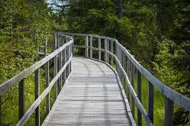 free photo path footbridge wooden walkway free image on
