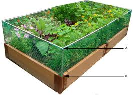 4x8 raised bed vegetable garden layout the gardens