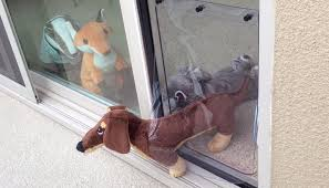 sliding glass door installation can you install a dog door in a sliding glass door u2013 top dog tips