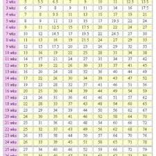 australian shepherd growth chart wellness u0026 info archives page 2 of 7 pet it dog apparel