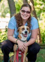 north river animal hospital veterinarian in fort gratiot mi usa