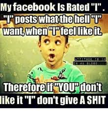 What The Hell Is A Meme - my facebook is rated i posts what the hell want when feel like it