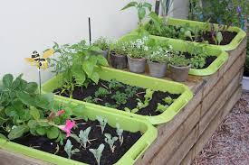 Raised Gardens For Beginners - raised bed vegetable garden planting vegetable garden ideas