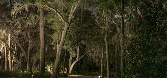 Landscape Lighting Trees Pre Configured Uplights Lighting Large Trees Sidera Landscape