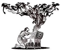 il vaso di pandora il vaso di pandora la prima donna della mitologia greca