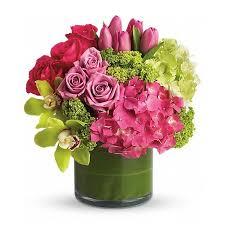 newport florist new sensations t82 3a in newport ca newport florist