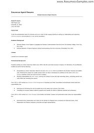 Monster Com Resume Samples Academic Essay Ghostwriting Services Au English Term Paper Sample