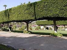 List Of Botanical Gardens List Of Botanical Gardens In