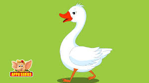 Gander by Goosey Goosey Gander Nursery Rhyme With Lyrics Youtube