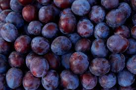 What Fruit Trees Grow In Texas - the best fruit trees to grow in central texas hunker