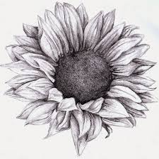 flower drawings to color top coloring pages flowers with coloring