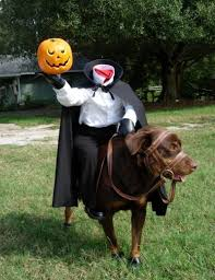 headless horseman costume dogs wearing costumes pictures of dogs in costumes dog in
