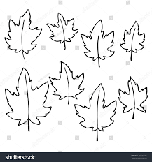 pencil sketch maple leaves stock vector 470574944 shutterstock