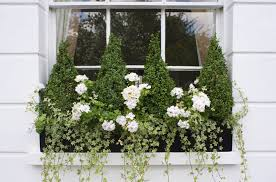 Flower Boxes That Thrive In by 18 Fun Gardening Ideas For Your Window Boxes Window Box Flowers