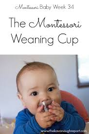 Montessori Weaning Table by Montessori Weaning Cup Montessori Baby Week 34