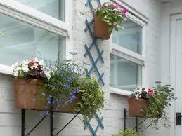 making a summer flower patio hgtv