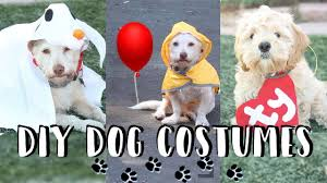 diy halloween dog costumes georgie ty beanie babies