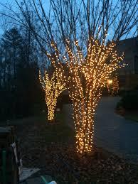 carolina christmas light pros