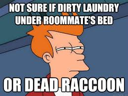 Dirty Laundry Meme - not sure if dirty laundry under roommate s bed or dead raccoon