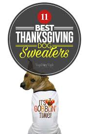 top 11 best thanksgiving sweater choices for 2017 holidays