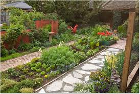 alternatives to grass in backyard imagining a no mow yard 7 lawn alternatives in pictures timber