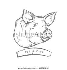 pig stock images royalty free images u0026 vectors shutterstock