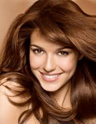 light golden brown hair color light golden brown rootstix cover gray roots instantly