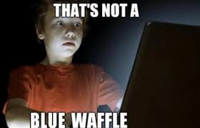 not a blue waffle funny meme funny memes