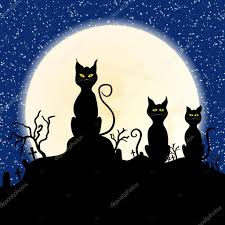 black cat on chimney with moon and starry stock vector