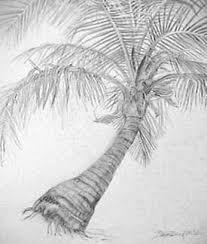 joan berg victor drawings from nature