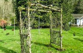 wedding arches made of tree branches custom birch wedding arches pergolas and chuppah oregon