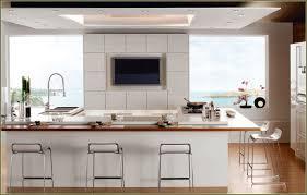 trendy modern kitchen cabinets miami 108 modern kitchen design