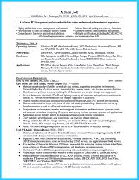 Technical Capabilities Resume Perfect Data Entry Resume Samples To Get Hired
