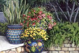 ideas for decorating pots orchid flowers garden planters flower