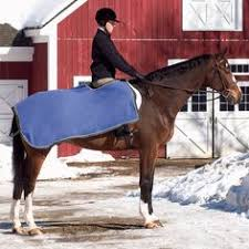 Bucas Irish Leg Warmer Riding Rug Weatherbeeta 1200d Detachaneck Winter Horse Turnout Blanket 66