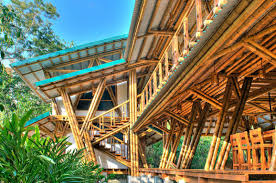 awesome bamboo house design and floor plan architecture beachfront