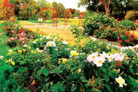 gardens in farmers branch tx