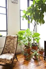 Grow Lights For Indoor Herb Garden - indoor small garden u2013 exhort me