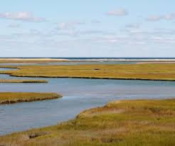 The Marsh Restaurant Cape Cod - no shortage of attractions on cape cod in the fall seadar inn by