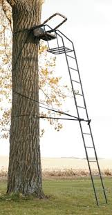 big riflemaster 16 ft deluxe ladder stand with
