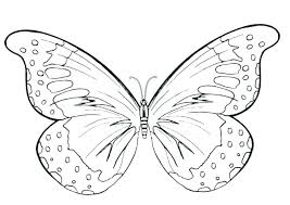 detailed butterfly coloring pages for adults butterflies coloring pages oganaija com