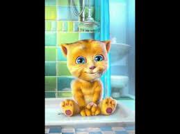 imagenes para whatsapp movibles gatito tierno muy recomendable para el whatsapp p youtube