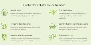 Seeking De Que Trata Seek App Para Ios Que Detecta Más De 30 Mil Especies Naturales