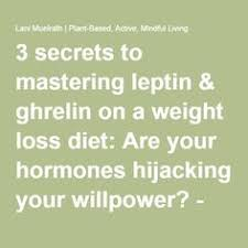 leptin leptin resistance diet u0026 weight loss all you need to know