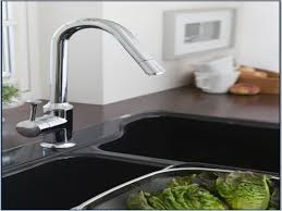 kitchen faucet low flow low flow kitchen faucet candresses interiors furniture ideas