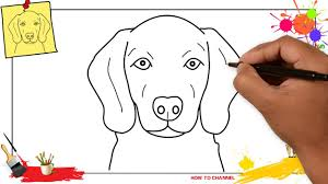 how to draw a dog face head 3 easy u0026 slowly step by step for